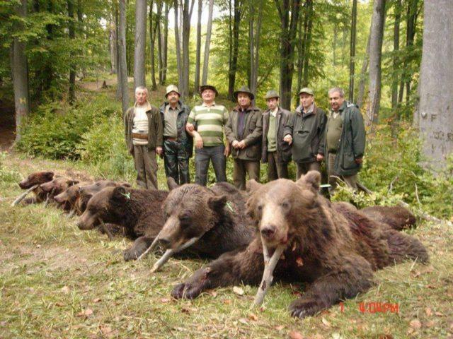 România, ţara în care statul permite masacrarea animalelor şi distruge habitate.
